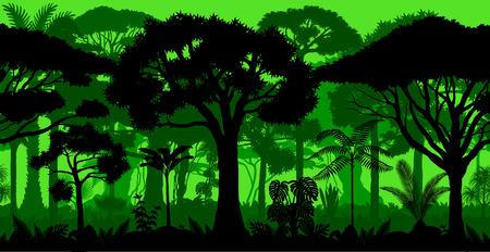 Rainforest rainforest jungle forest background