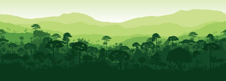 Rainforest rainforest jungle forest background 일러스트