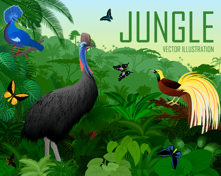 Vector Papua New Guinea jungle forest with victoria crowned pigeon, cassowary, Lesser Bird of Paradise Illustration
