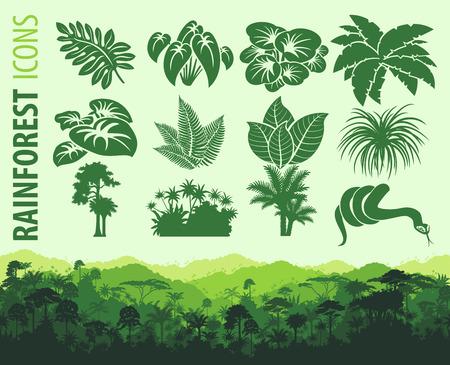 rainforest forest background Ilustrace