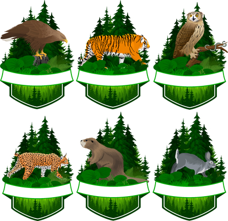 set of vector woodland emblems with beaver, rabbit, white-tailed eagle, lynx, tiger, common garter snake
