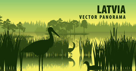vector panorama of Latvia with black stork Illustration