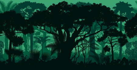 Rainforest rainforest jungle forest background Ilustração