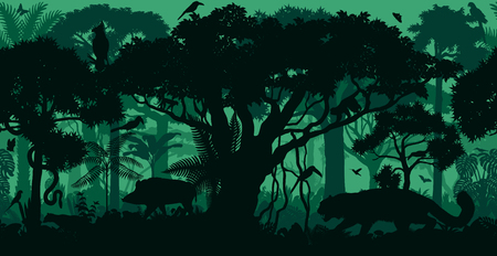 Rainforest forest background with animals