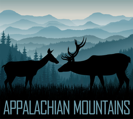 white Appalachian Mountains with couple of white tailed deers