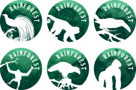 set of vector jungle rainforest emblems with orangutan, gorilla, bird of paradise