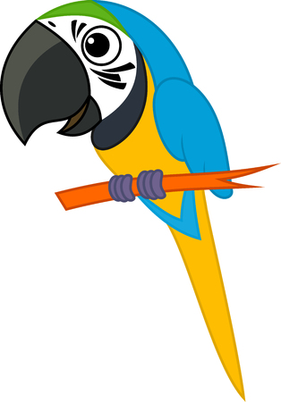 Cute Vector cartoon blue-and-yellow macaw parrot