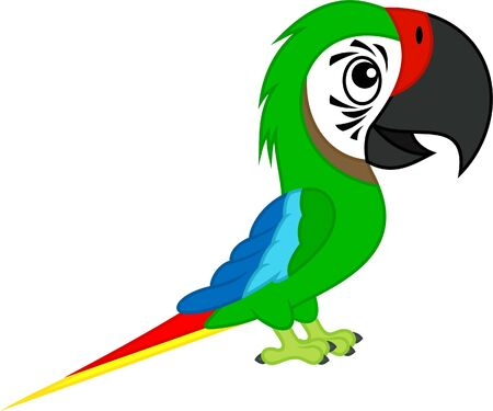 Cute Vector cartoon green military macaw ara parrot