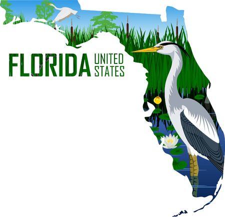 vector state of america in wetland