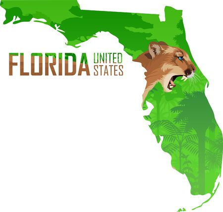 vector Florida - American state map with mountains