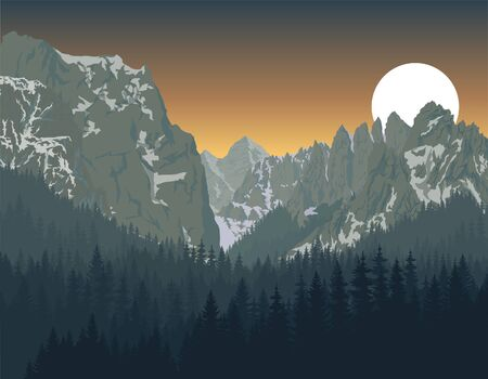 Yosemite National Park with woodland forest Illustration