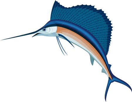 vector swordfish Atlantic sailfish
