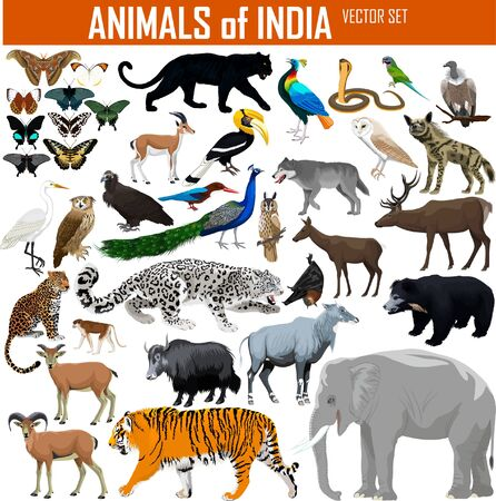 Vector set of animals of India