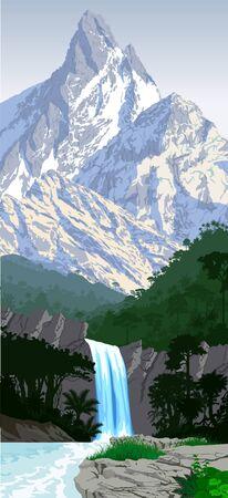jungle rainforest mountains