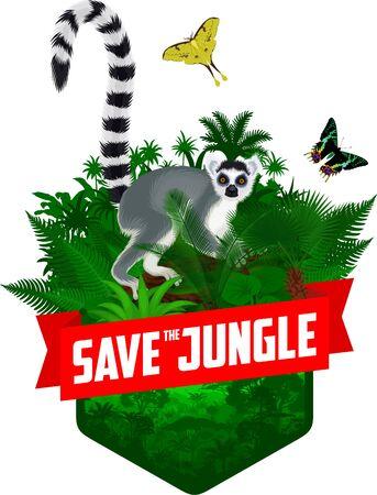 vector jungle rainforest emblem with Madagascar lemur, Madagascan sunset moth and African moon moth