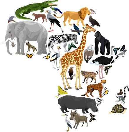 Vector Africa fauna map, flat elements. Animals, birds, reptiles, insects big set. Geography infographic illustration