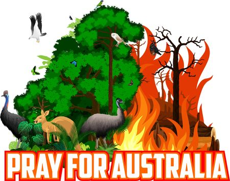 Pray for Australia Save Green Jungle Rainforest - Fire Deforestation Concept Landscape Vector with ostrich Emu, white bellied sea eagle, barn owl, cassowary, kangaroo, flying fox and butterflies