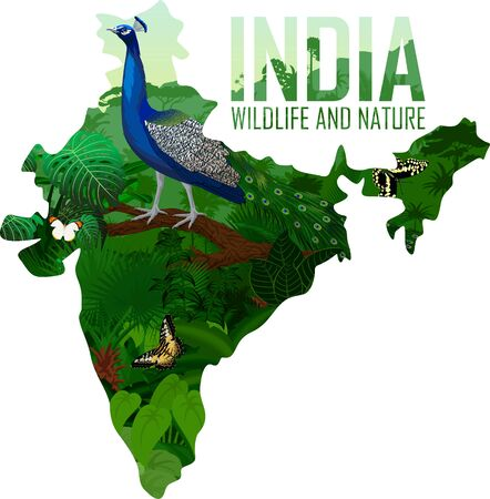 vector India map with male peacock peafowl
