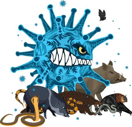 vector angry wild animal with coronavirus infection: pangolin, bat, pig, snake and large virus