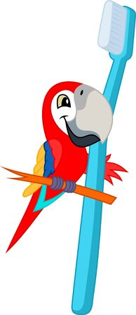 Cute Vector cartoon red scarlet Macaw ara parrot with toothbrush