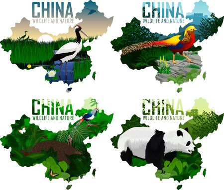 set of vector china maps with animals: Pangolin, diamond pheasant, Golden pheasant, Red-crowned crane, and panda