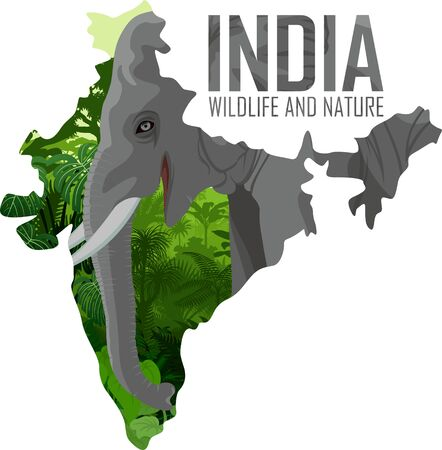 vector India map with indian elephant