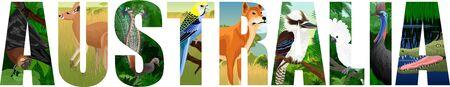 vector Australia word with animals with lyreburd, dingo, bat, parrot, crocodile, kookaburra, kangaroo and cassowary Illustration