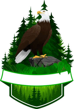 vector woodland emblem with bald eagle