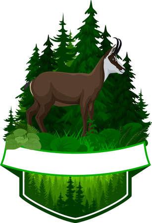 vector woodland emblem with chamois Vecteurs