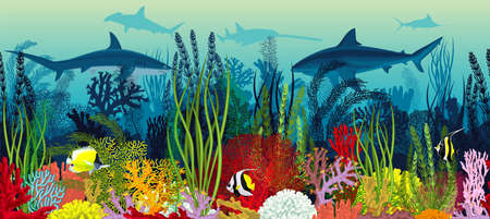 Vector underwater coral reef horizontal seamless pattern. Undersea bottom texture with colorful tropical fishes and sharks Vettoriali