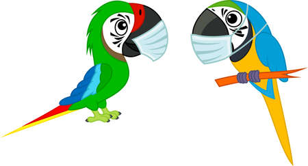 Cute Vector cartoon blue-and-yellow macaw parrot and green Military Macaw ara with mask