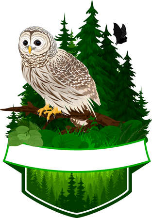 vector woodland emblem with barred owl