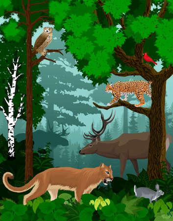 vector woodland green forest trees backlit with cougar puma, lynx, eagle owl, rabbit, red cardinal and elk Vektorgrafik