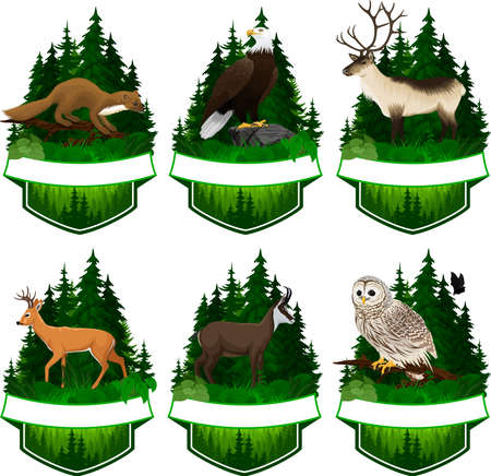 set of vector woodland emblems with white tiled deer, barred owl, chamois, bald eagle, pine marten and reindeer