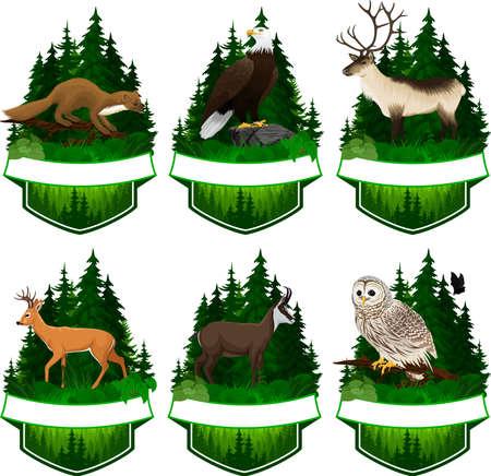set of vector woodland emblems with white tiled deer, barred owl, chamois, bald eagle, pine marten and reindeer