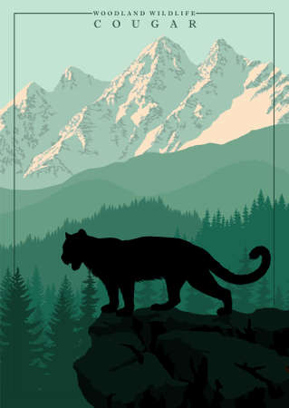 vector mountain in woodland on Rocky mountains with  Cougar, mountain lion