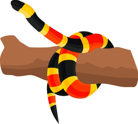 vector Eastern coral snake illustration 向量圖像