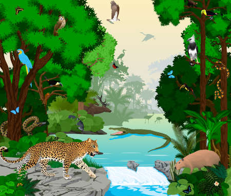Rainforest river with animals vector illustration. Vector Green Tropical Forest jungle