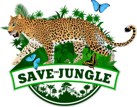 vector tropical jungle rainforest emblem with jaguar and blue morpho butterfly 向量圖像