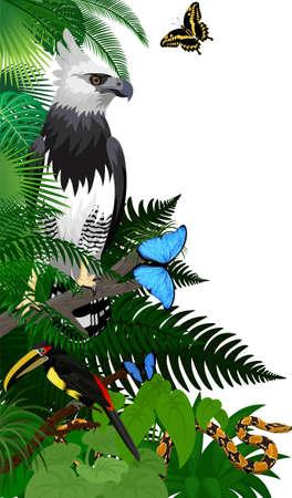 Vector jungle rainforest foliage vertical border illustration with Harpy Eagle, python, aracari toucanet and butterflies