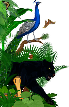 Vector jungle rainforest foliage vertical border illustration with King cobra, black panther, male peacock peafowl and butterflies