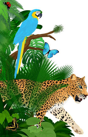 Vector jungle rainforest foliage vertical border illustration with blue macaw, jaguar and butterflies