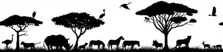 Vector horizontal seamless tropical african savannah with lions, zebra, vulture, heron, hyena, common warthog, rhinoceros, cheetah, gazelle, monkey, African ostrich and crowned crane. 向量圖像