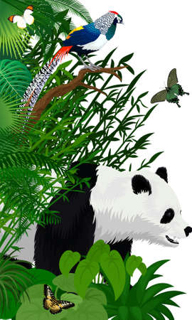 Vector jungle rainforest foliage vertical border illustration with giant panda bear, butterflies and diamond lady amherst's pheasant
