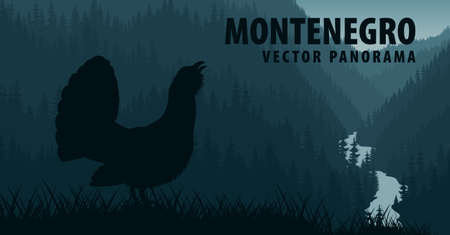 vector panorama of Montenegro with Western Capercaillie Ilustração