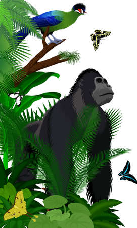 Vector jungle rainforest foliage vertical border illustration with male gorilla, Hartlaub's turaco and broadly green-banded swallowtail butterfly