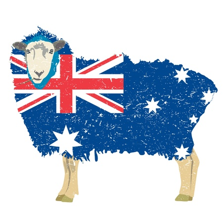 aussie: Australian Sheep
