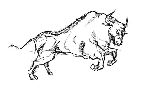 Bull animal strong power matador hand drawn sketches white isolated background vector design illustration