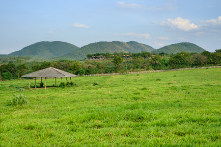 horse stable: Horse Stable with green grass field in front of hills
