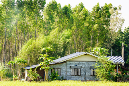 developing country: House in the woods